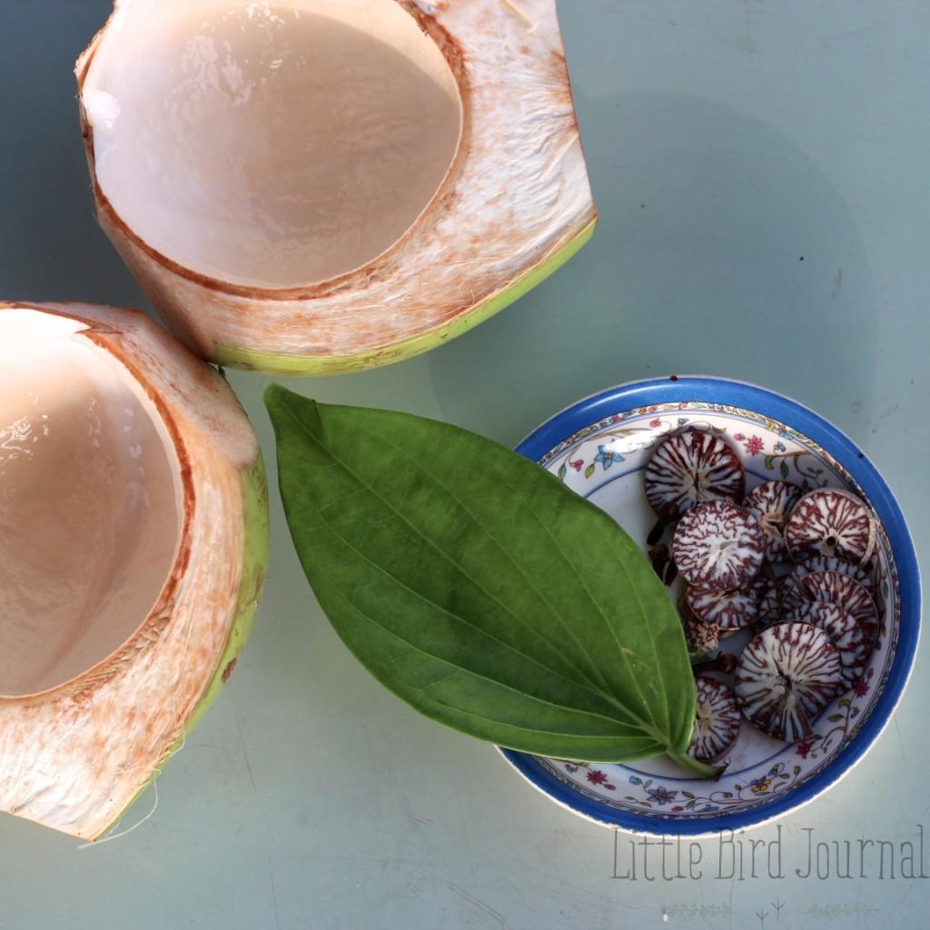 green juice article photos 10
