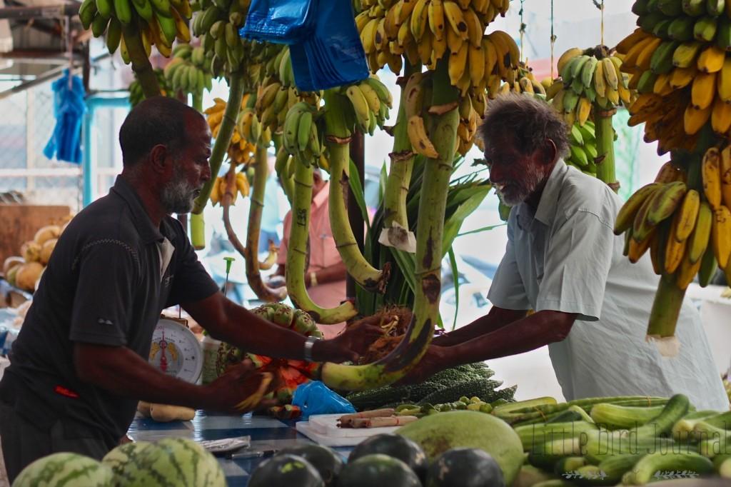 green juice article photos 4