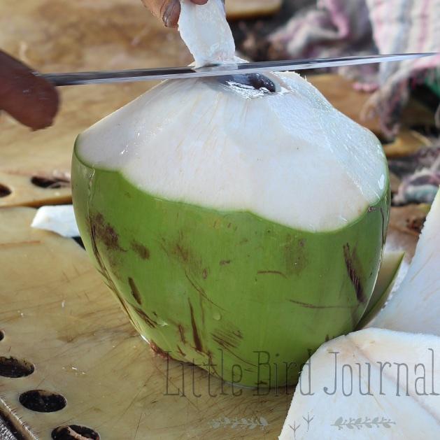 green juice article photos 8